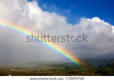 Hawaiian rainbow - stock photo