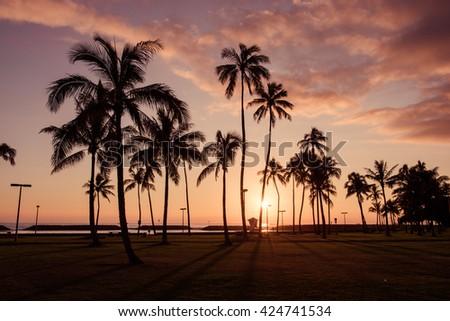 Hawaiian sunset with coconut tree silhouettes - Honolulu, Oahu  - stock photo