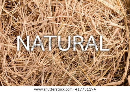 Hay background as a front view of a bale of hay as an agriculture farm and farming symbol of harvest time with dried grass straw with word natural - stock photo