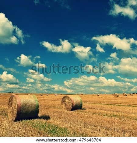 Hay bail in golden field landscape. Summer Farm Scenery with Haystack on the background of Beautiful Sunset. Harvest time.