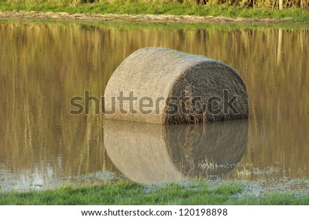 Hay bail with reflection in flooded field - stock photo