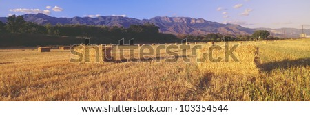 Hay Bails and Topa Topa Mountains, Upper Ojai, California - stock photo