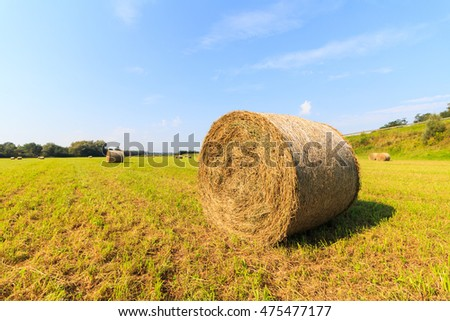 Hay bails on field in Germany wide angle