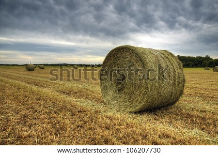 Hay bale - stock photo