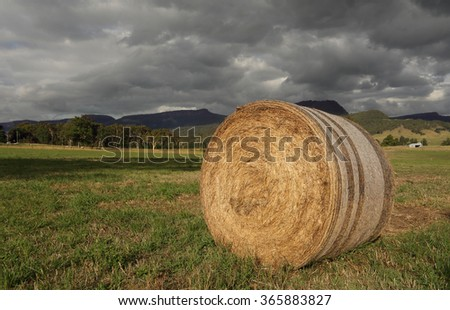 Hay bale in late afternoon light in the Kangaroo Valley, NSW, Australia