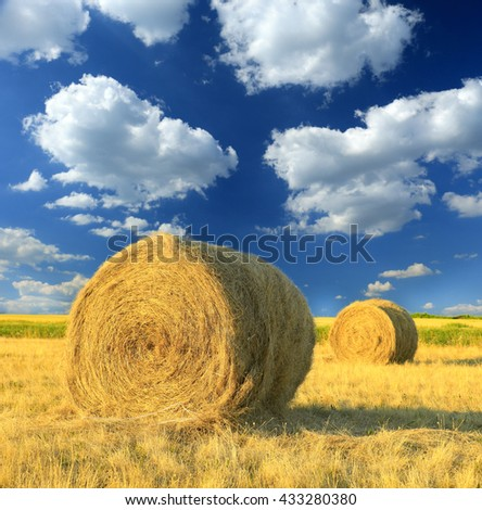 Hay bale in the countryside - stock photo