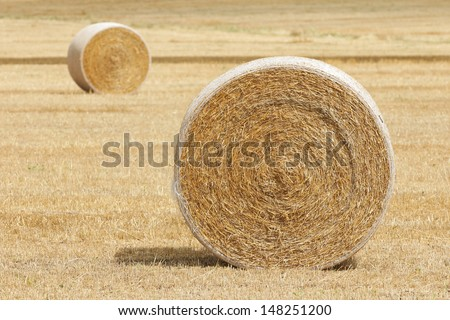 Hay Bale Rolls in Field - stock photo