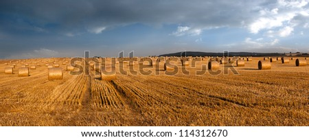 Hay bales and blue sky - panoramic view - stock photo