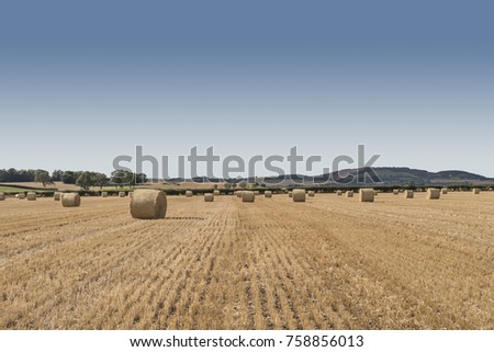 Hay bales in a farmers field in Autumn in Scotland