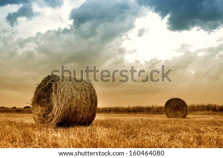 Hay bales in a field just before a storm. Hay Bale farming. - stock photo