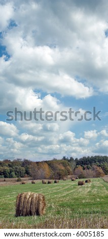 Hay bales in a field on a cloudy autumn day. - stock photo