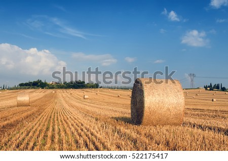hay bales in italy in summer