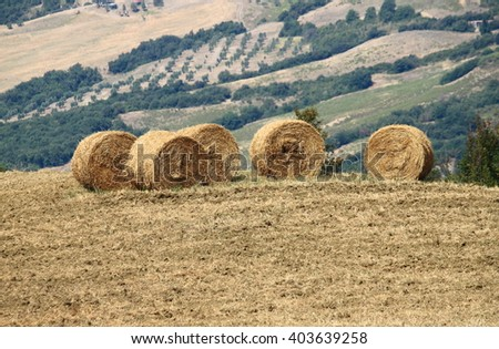 Hay bales in the countryside - stock photo