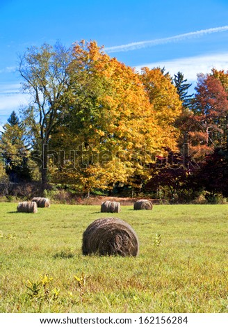 Hay bales on farm during the fall - stock photo