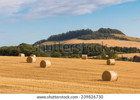 Hay bales on fields in the wonderful landscape of Perthshire, Scotland - stock photo