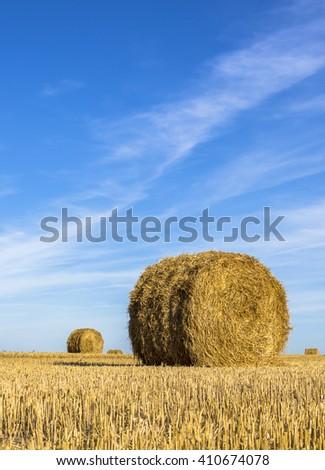 Hay bales on rural landscape,Minsk,Belarus - stock photo
