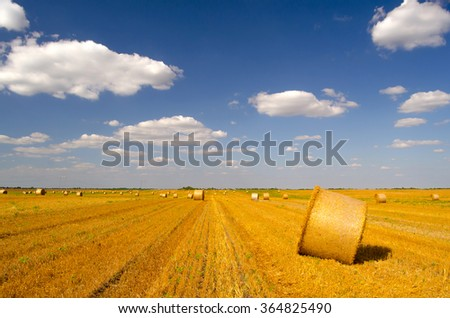 Hay bales on the agricultural field after harvest on sunny summer day. - stock photo