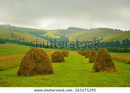 Hay bales on the field after harvest, Romania - stock photo