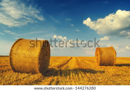 Hay bales on the field after harvest, Serbia.