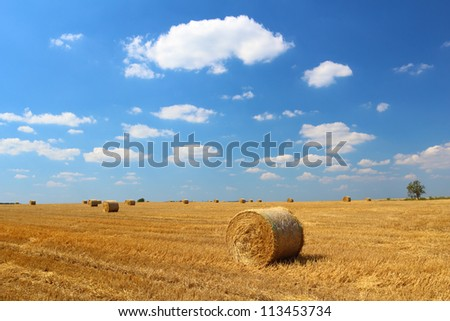 Hay bales on the field with blue sky and small clouds above - stock photo