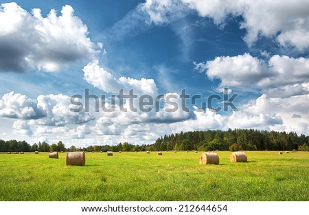 Hay bales with blue sky and fluffy clouds - stock photo