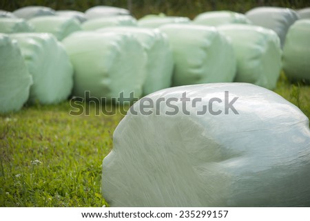 hay bales wrapped in plastic foil