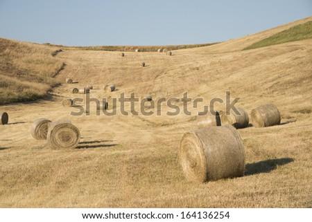hay balls - stock photo