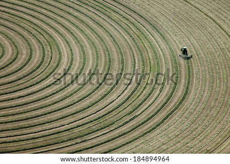 Hay being turned in a farm field, for drying. - stock photo