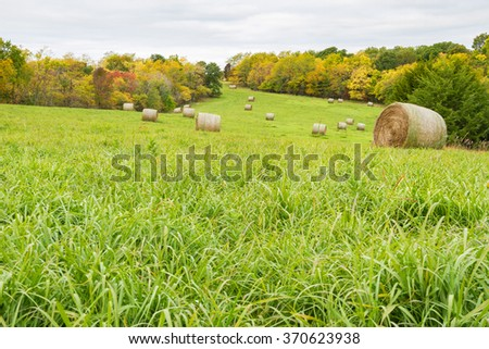 Hay Field during the fall time with hay bales. - stock photo