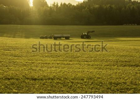 Hay Harvest  - stock photo