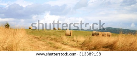 Hay harvest on meadow in Pasterka village, Poland, Table Mountains travel destination. - stock photo