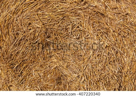 Hay in a haystack. It can be used as background - stock photo