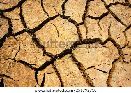 Hay on drought land, amazing arid and cracked ground, climate change made agriculture plantation have to reduct, in summer it very hot, warming is global problem, cause by greenhouse effect - stock photo