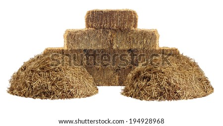 Hay pile and bundled tied haystack group isolated on a white background as an agriculture farm and farming design element as a symbol of harvest with dried grass straw. - stock photo