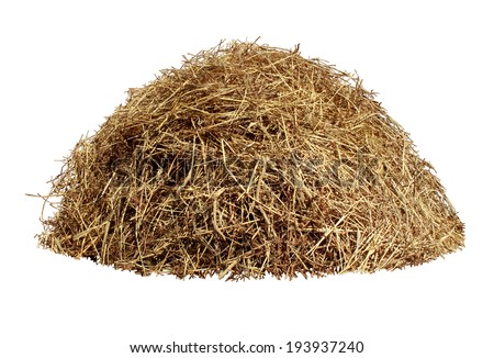 Hay pile isolated on a white background as an agriculture farm and farming symbol of harvest time with dried grass straw as a mountain of dried grass haystack. - stock photo