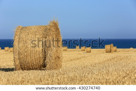 Hay rolls on sea background
