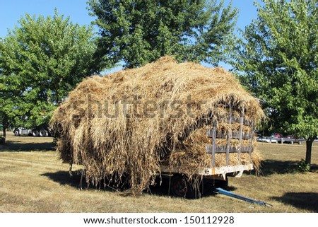 hay wagon full of harvested hay with trees and blue sky in the background - stock photo