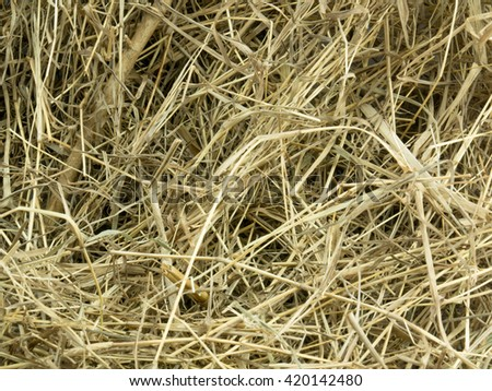 Haystack Backgroung - stock photo