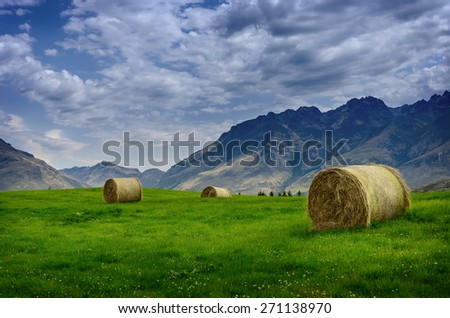 Haystack in a field in summer against a background of mountains in New Zealand - stock photo