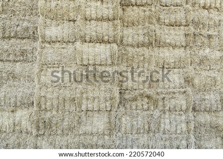 Haystack in nature farm, straw and feed - stock photo