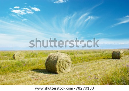 haystack on the meadow in sunny day