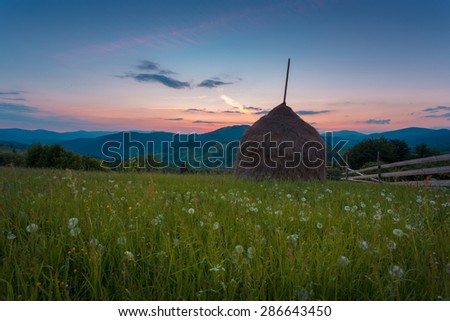 Haystacks against twilight summer landscape in the Ukrainian Carpathian mountains. Grassland with dandelions. - stock photo