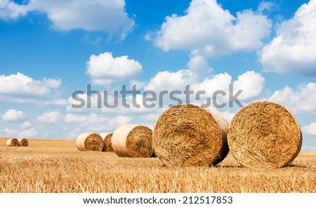 Haystacks in the field. Clouds in the sky on a bright Sunny day