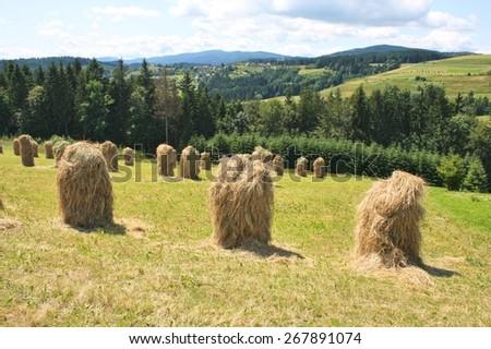 Haystacks on highland grassland. Landscape in Poland - stock photo