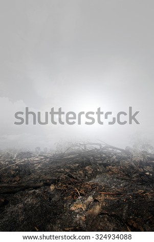 Haze  by the forest fire and burning of plantation in Indonesia. - stock photo