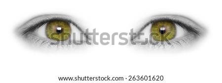 Hazel eyes isolated on white background - stock photo