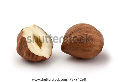 Hazel nut isolated on white background