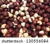 Hazelnut - stock photo