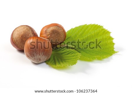 Hazelnut and leaf on white background. Shallow depth of field.