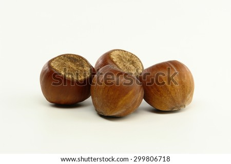 Hazelnut Closeup